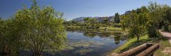 Mountain, winelands and sea – Welcome to Helderberg Village