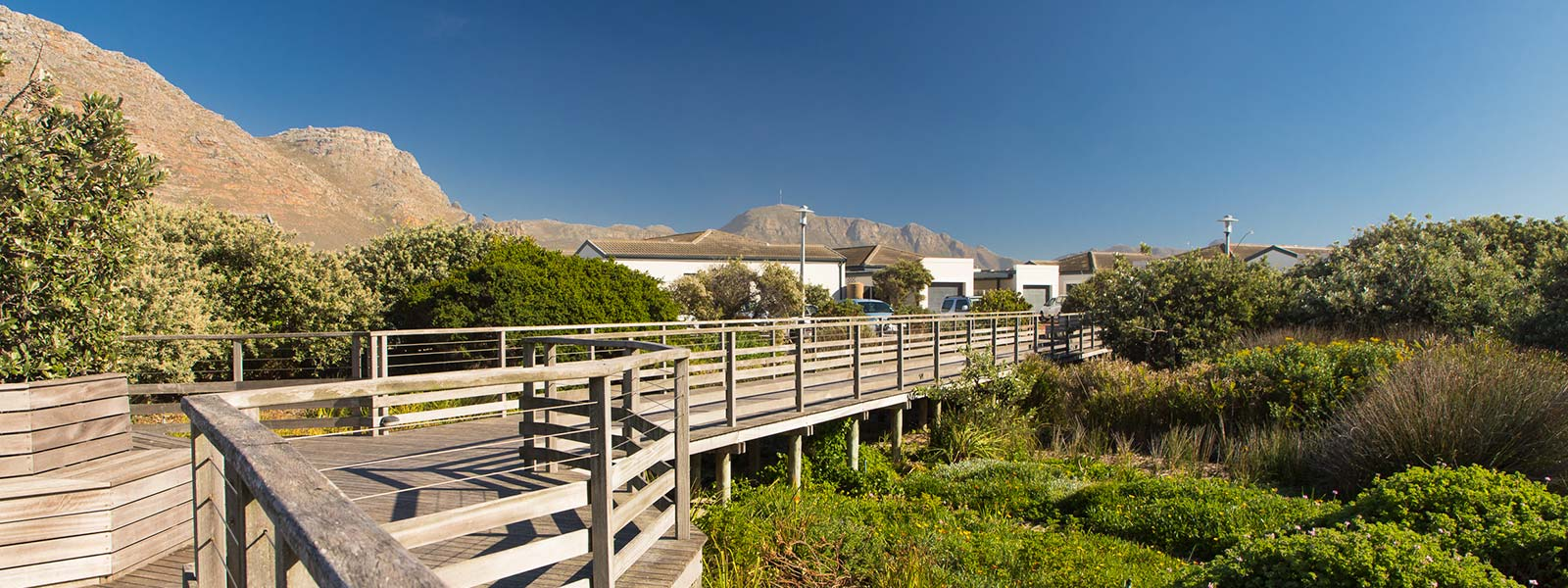 Evergreen Muizenberg