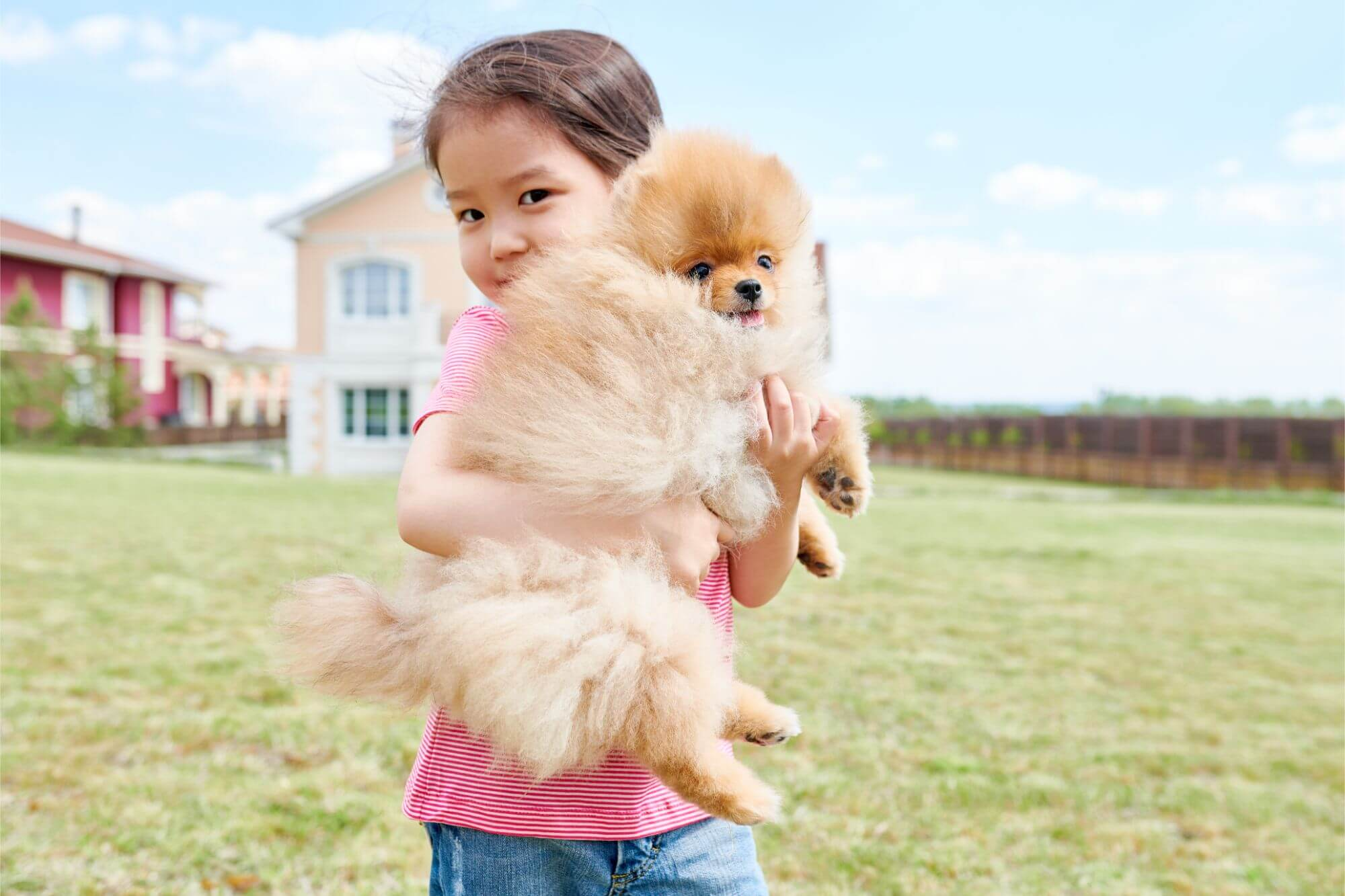 Petowners 2 - What pet owners should keep in mind when moving to an estate